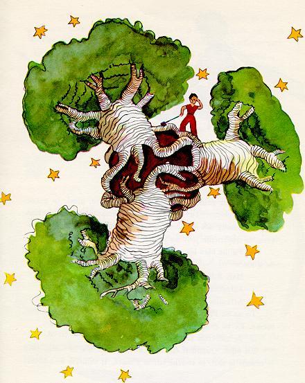 小王子 小王子图片 猴面包树的危害