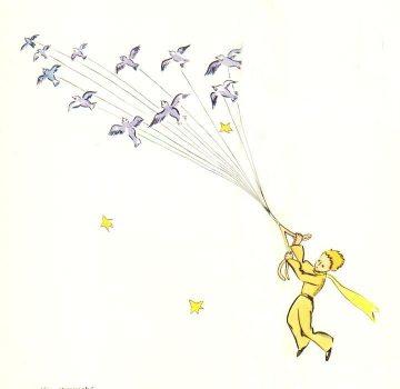 小王子 小王子图片 小王子趁着候鸟迁徙的机会出走
